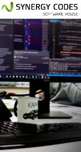 Synergycodes - web development services